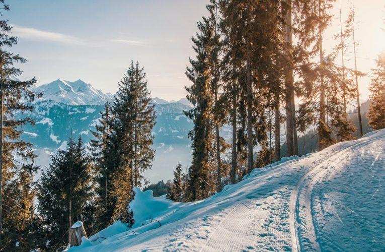 Co można robić zimą w górach?